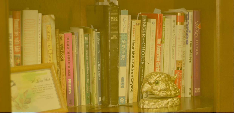 BookShelf-Slider